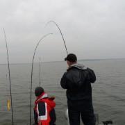 paravan har löst ut i fiskereportaget nötande ger resultat i fisketidning