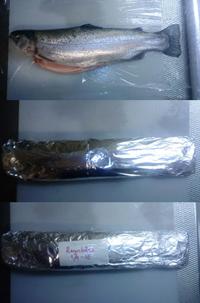 Fiskemagasinet.se tips om fryspaket för fisk