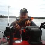 gyltor och torsk i fiskereportage trög början men bra avslutning i fisketidning