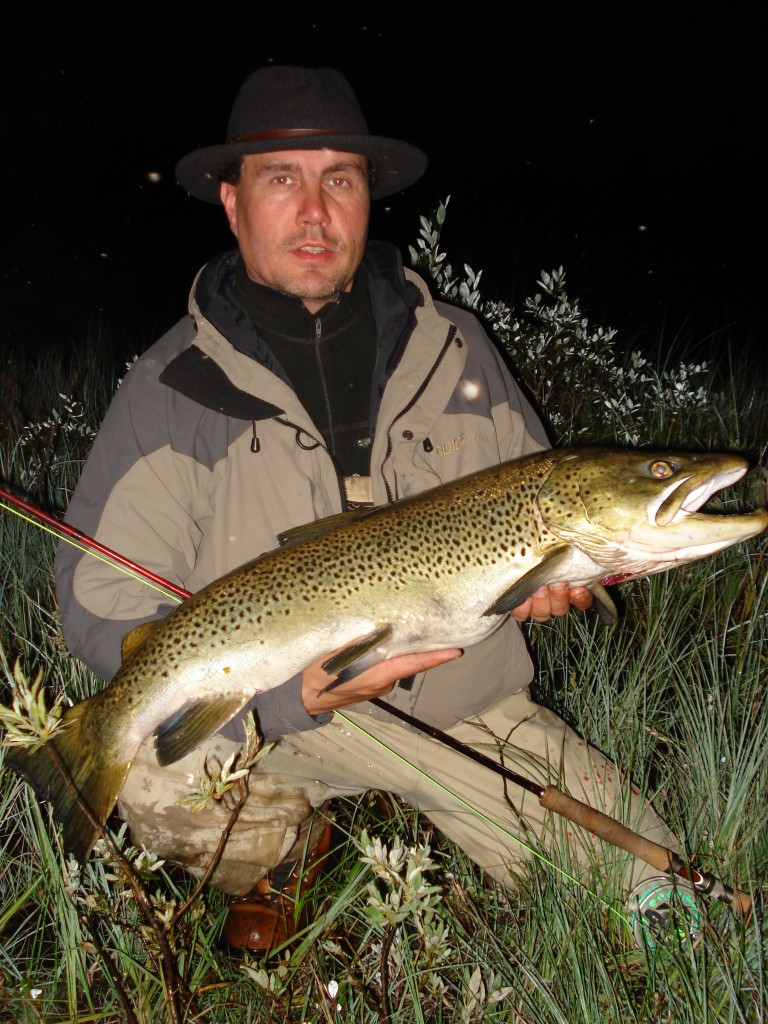 skandal i miljörättssverige i fiskeartikeln justitiemord på bergnäsöringen i fisketidningen fiskemagasinet.se