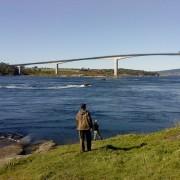 vid nipflod i fiskereportaget saltströmmen ett naturfenomen i fisketidning