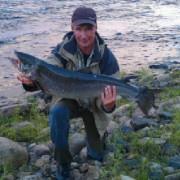 lax på 12,5 kg i huggtabell och månfas i fisketidning