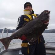 team poseidon i söröya - 2011 med en flundra som vägs till 16,4 kg i fisketidningen