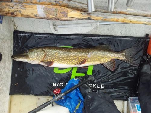 egentillverkad crank fixade PB i fisketidningen