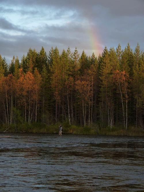 regnbågen som fond i lycka och vemod på fisketidningen