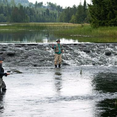 Fjällorna drog västerut – och fick napp i detta fiskereportage i strömmande vatten