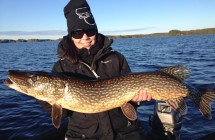 Evelina Uimonen med en gädda på 108 cm som tog på vertikalfiske med en liten gös jigg.