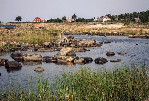 Fotograf: Mats Wilhelm / Naturfotograferna / IBL Bildbyrå